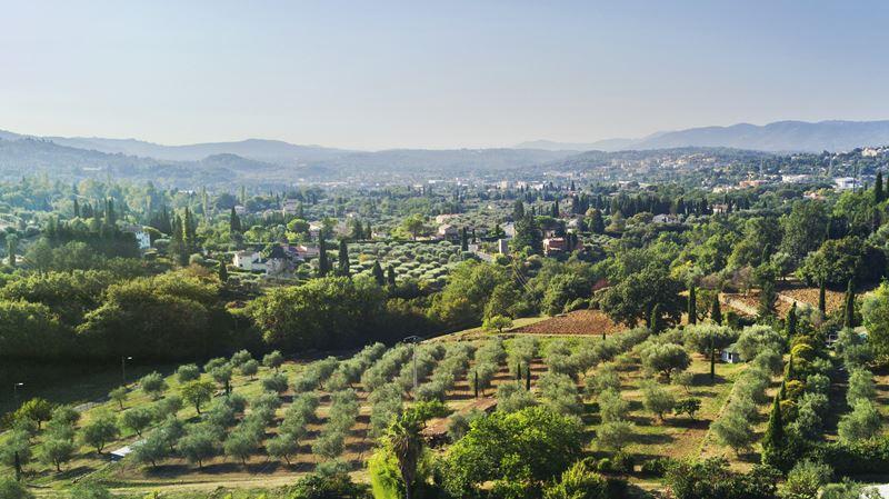 Lancôme приобретает историческое поместье в Грасе на юге Франции в Провансе - фото 1