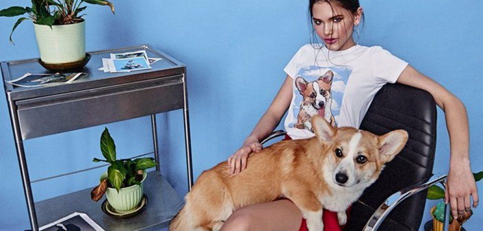 Поп-арт футболки с домашними питомцами Pets Tee