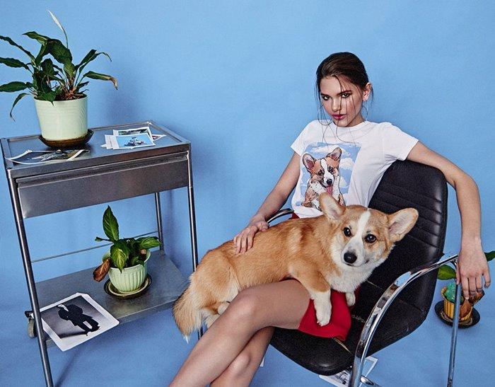 Поп-арт футболки с домашними животными Pets Tee:  собака корги