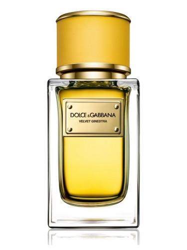 Новые ароматы Dolce&Gabbana: Velvet Ginestra - цветочно-цитрусовый