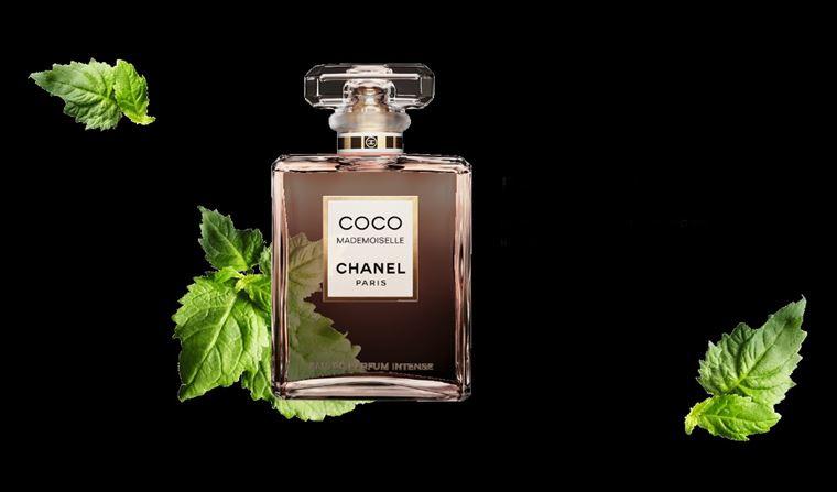 Coco Mademoiselle Intense – новый аромат Chanel 2018 - ноты пачули