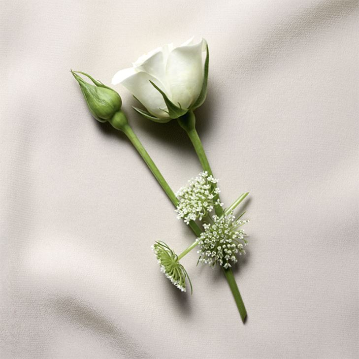 Blouse – аромат Yves Saint Laurent с нотами дамасской розы