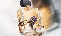 Libre - новый женский аромат Yves Saint Laurent